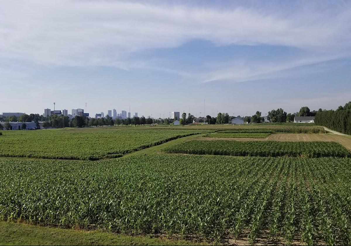 Agronomic and Soil Science